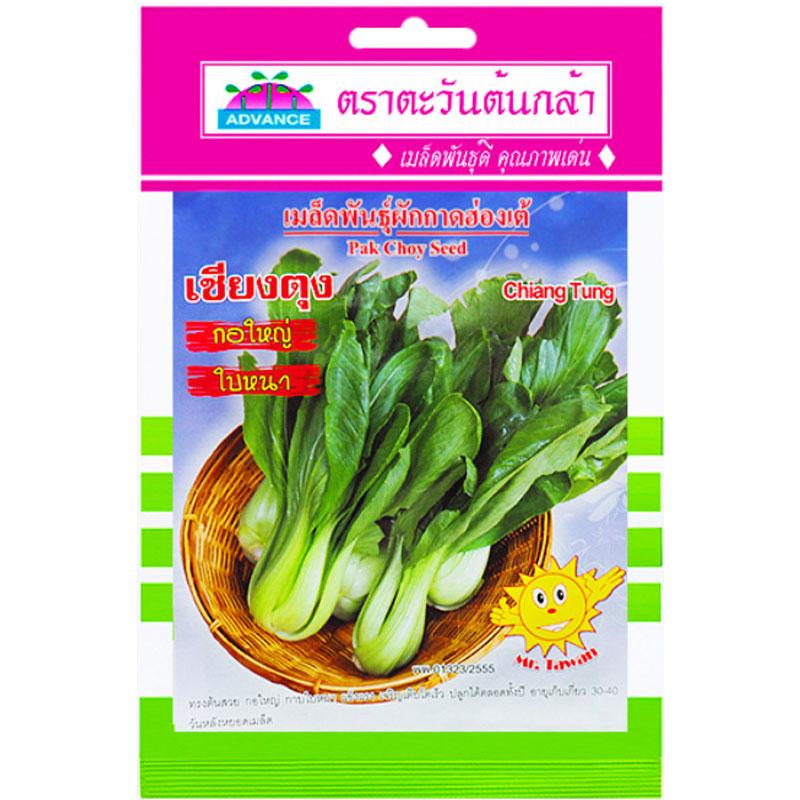 รูปเมล็ดผักกาดฮ่องเต้ เชียงตุง