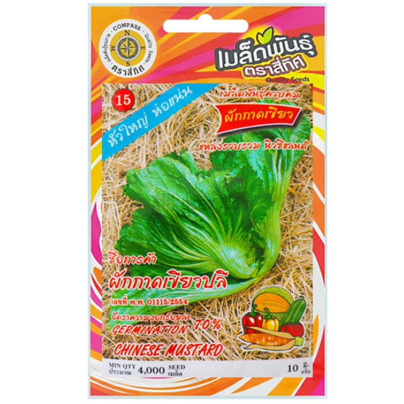 รูปเมล็ดผักกาดเขียวปลี