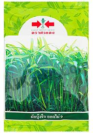 ผักบุ้งจีน ยอดไผ่  9