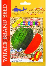 เมล็ดแตงโม พันธ์ุนารี