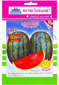 เมล็ดแตงโม กินรี