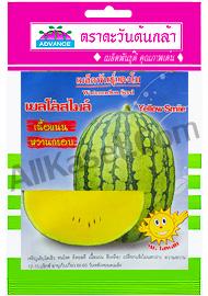เมล็ดแตงโม เยลโล่สไมล์