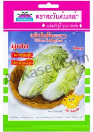 เมล็ดผักกาดขาว มูเซอ
