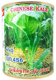 เมล็ดคะน้า(ยอด) บิ๊ก456