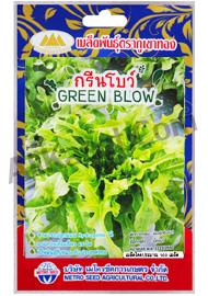 เมล็ดผักกาดหอม กรีนโบว์