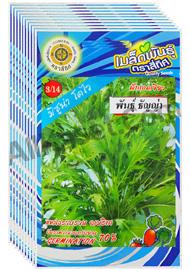 เมล็ดผักกาดเขียว ธัญญ่า