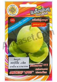 แคนตาลูป แอปเปิ้ล 4 ทิศ