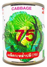 กะหล่ำปลี (75)