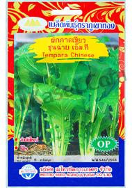 เมล็ดผักกาดเขียวเอ็ม.ที