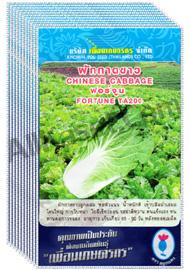 เมล็ดผักกาดขาว ฟอร์จูน