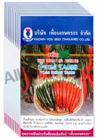 เมล็ดพริก น้ำแพร่ TA099