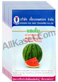 เมล็ดแตงโม คันไซ