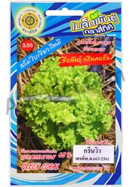 เมล็ดผักกาดหอม กรีนวิว