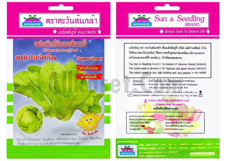 รูปเมล็ดผักกาดเขียวปลี ซุปเปอร์กรีน